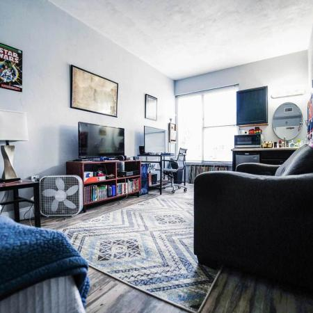 The Renegade, interior, studio apartment, blue decor, bed, sofa, tv, kitchen