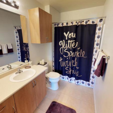 Ornate Bathroom | ECU Off Campus Housing | The Landing