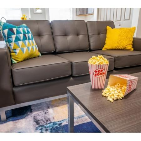 Spacious Living Area | ISU On Campus Apartments | Smallwood Plaza
