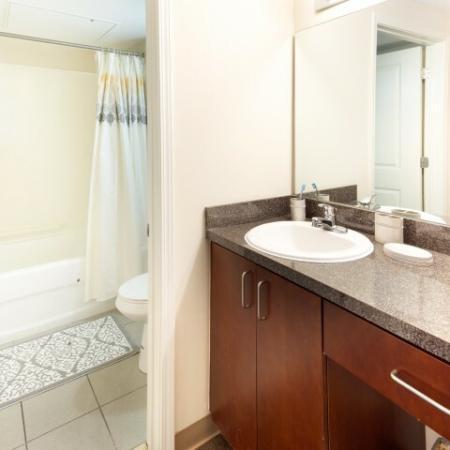 bathroom sink shower | 100 Midtown Apartments in Atlanta, GA