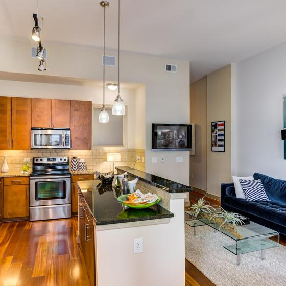Furnished living room and kitchen