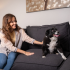 girl playing with dog on couch