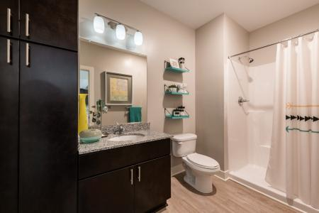Ornate Bathroom   Infinity at Centerville Crossing