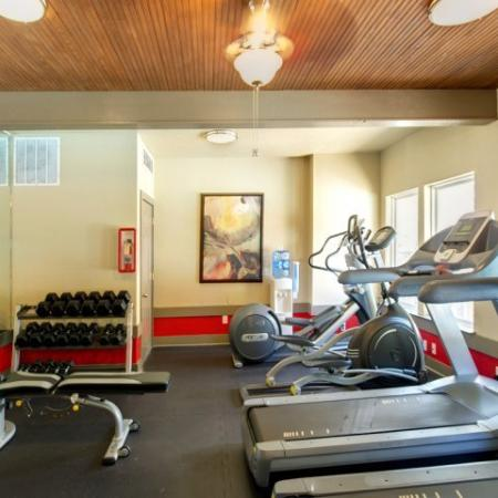 Apartment gym | cardio | weights | Museo