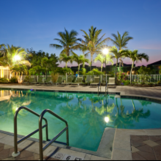 Bay Breeze, exterior, night, pool, palm trees