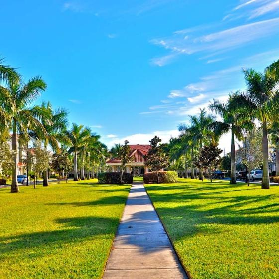 Floresta, exterior, grass and palm tree lined walkway to buiding