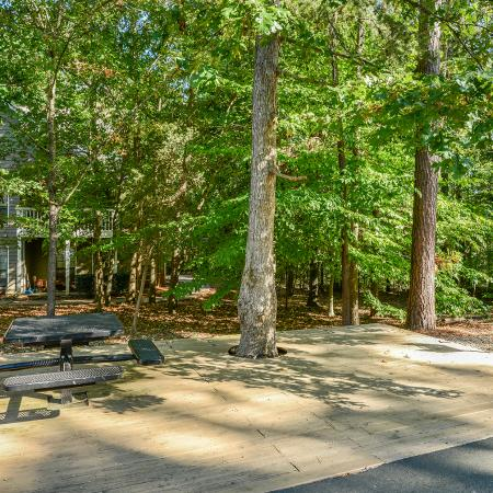 Picnic and grill area at Windemere apartments in Raleigh