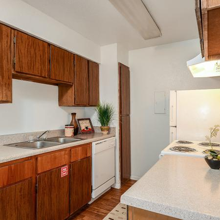 Pet friendly apartments in Corpus Christi