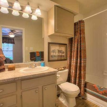Bathroom ith large vanity and shower bathtub combo | Vizcaya apartments