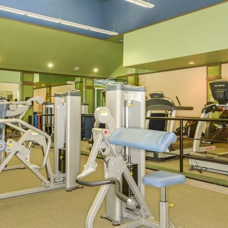 Via Lugano apartment fitness center weight equipment