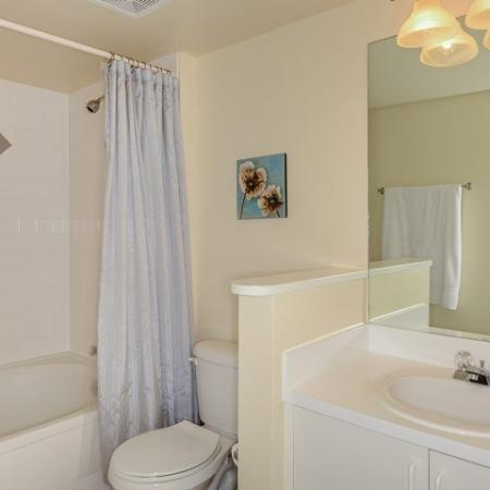 Bathroom with shower bathtub combo