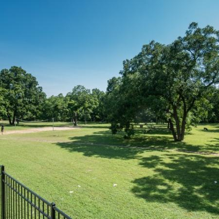 Outdoor recreation | Volleyball court | Madison at Walnut Creek apartments