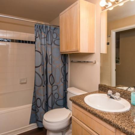 Master bathroom | 1 bedroom apartment | Madison at Walnut Creek in Austin