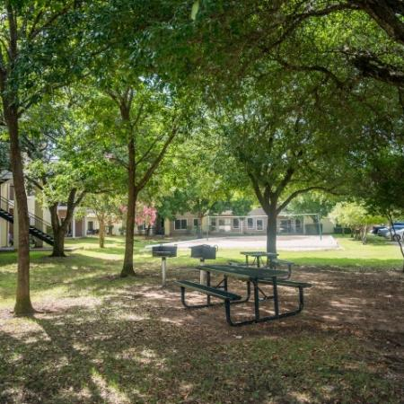 Picnic area with tables and charcoal grills | Sedona Springs apartments
