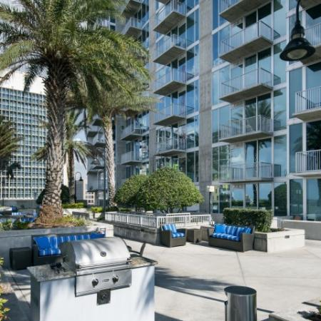 Pet friendly apartments in downtown Tampa