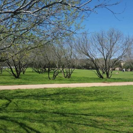 Wide open park space | The Park at Monterey Oaks