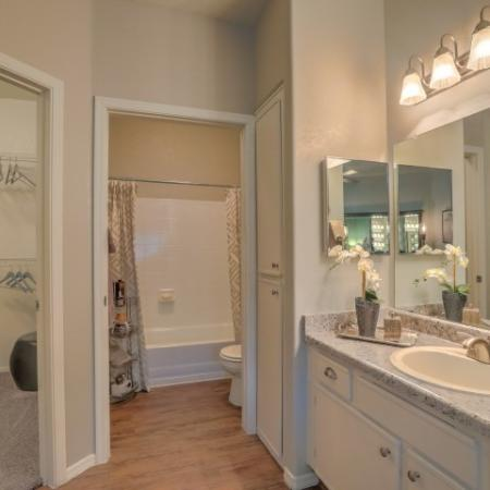 view of master bathroom and walk-in closet.Separate vanity with large mirror, white cabinets.