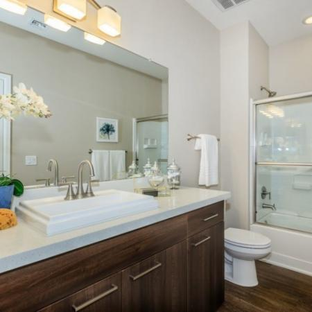 Modern bathroom with brushed nickel fixtures and hardwood floors
