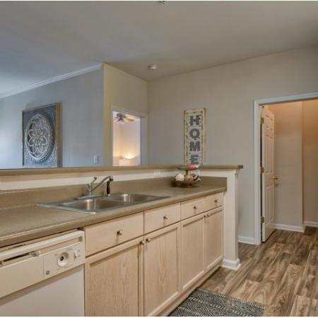 Kitchen with double basin sink | River Birch apartments in Charlotte NC