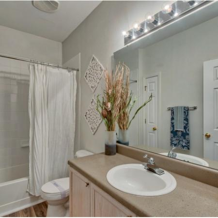 Master bathroom with tiled shower walls | River Birch apartment homes