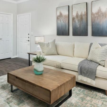 Living room | Lodge at Lakeline apartments