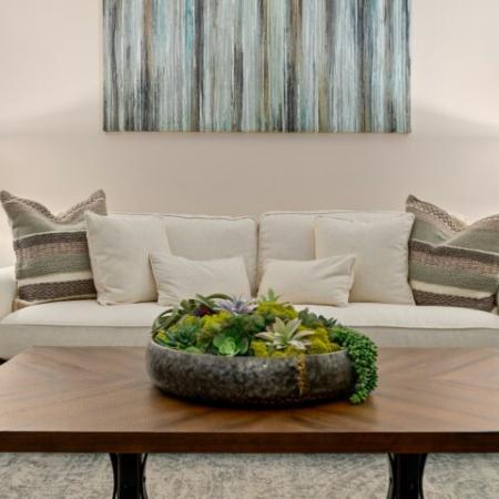 Cedar Park TX apartment | carpeted living room