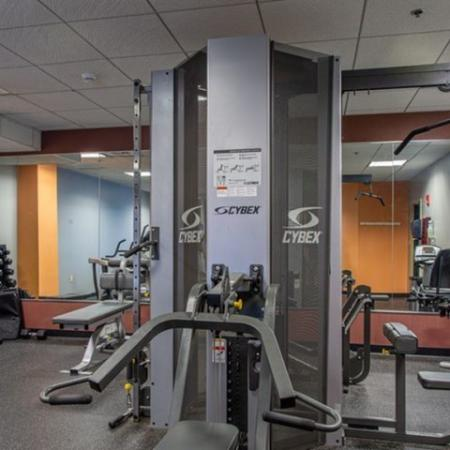 Apartment gym free weights | Residences at Manchester Place