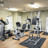 Fitness Center at Palm Village