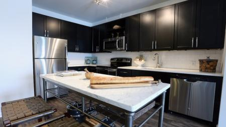 Pet-Friendly Apartments in Morristown, NJ | Modera 44
