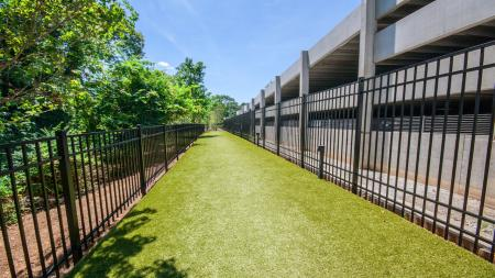 Outdoor Dog Run | Modera Morningside