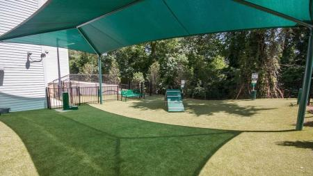 Dog Park with Agility Equipment | Modera Morningside