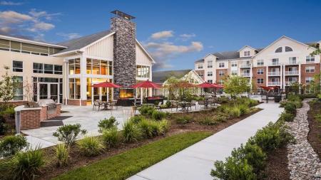 Brand New Laurel Apartments   Modera Westside