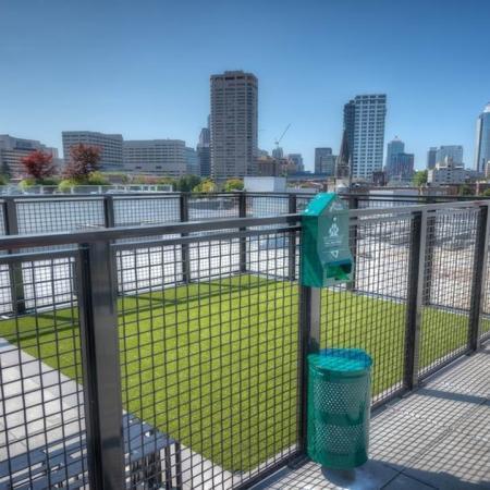Rooftop Pet Park | Modera Capitol Hill