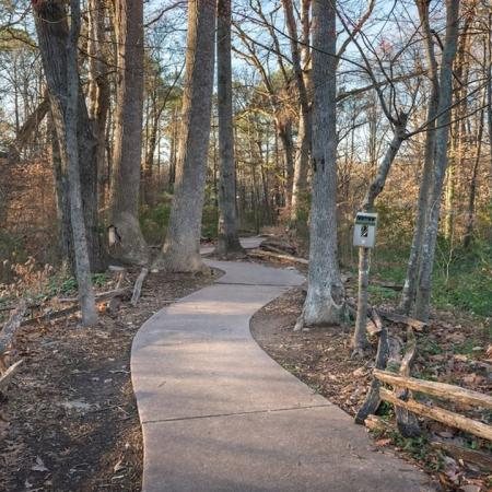 Chattahoochee River Walking Trails