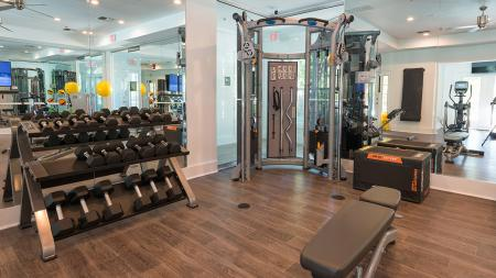 Free Weights and Weight Machines | Alister Quincy