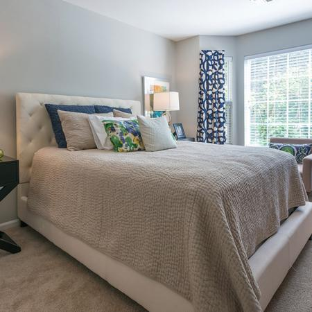 Oversized Bedroom Windows Offer Plenty of Light | Alister Quincy