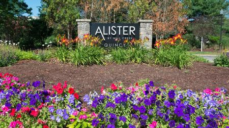 Welcome to Alister Quincy | Alister Quincy