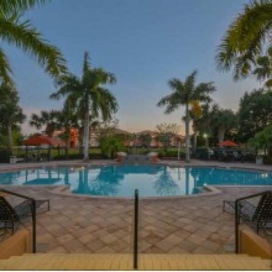 Park Crest At The Lakes, exterior, sparkling blue swimming pool, palm trees