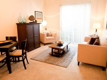 Light-filled living rooms at The Alexander at Ghent Apartment Homes in Norfolk, VA