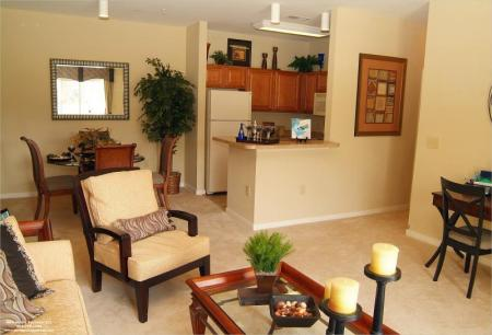 Open floorplans at River Forest Apartments in Chester, VA