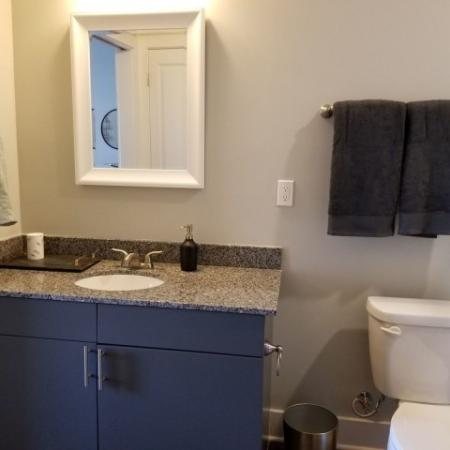 Luxurious Master Bathroom   Plainfield IN Apartments   Echo Park at Perry Crossing