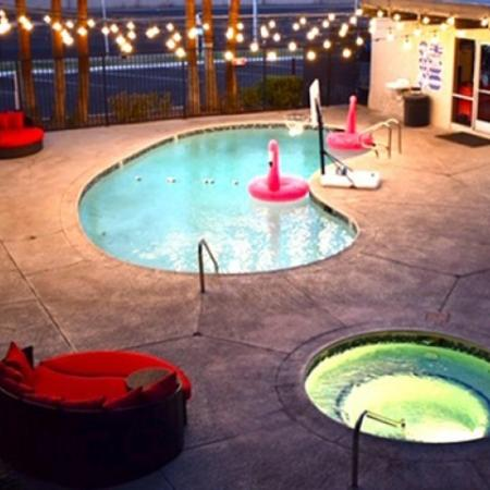 Swimming Pool | 2 Bedroom Apartments For Rent In Las Vegas | The Point on Flamingo