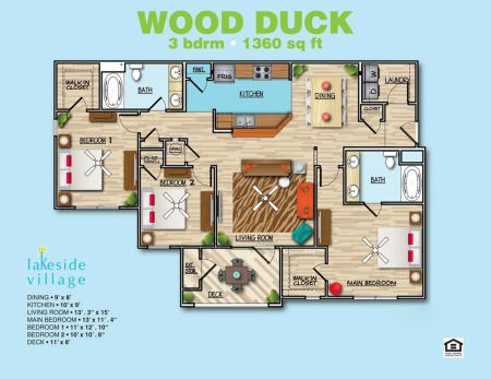 Wood Duck A
